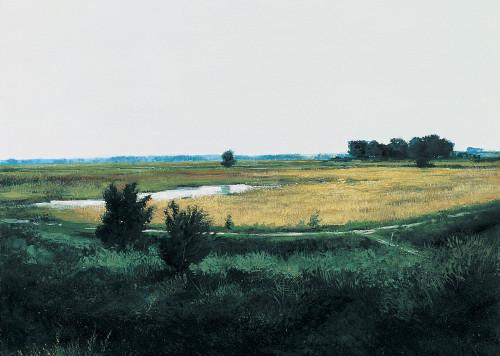 Nowhere Land I